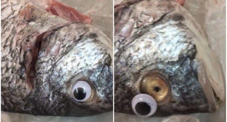 Vendían pescados con ojos de juguete
