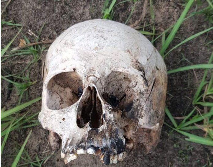 El cráneo se encontraba tirado en un basural.