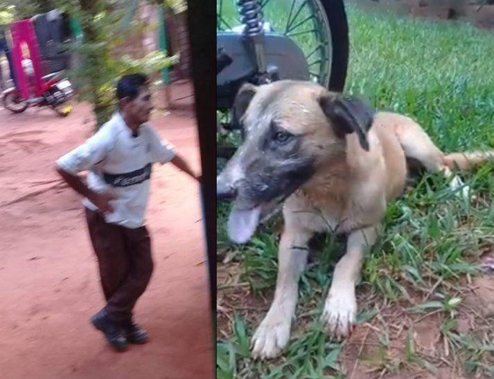 Hombre envenena a perros de su barrio
