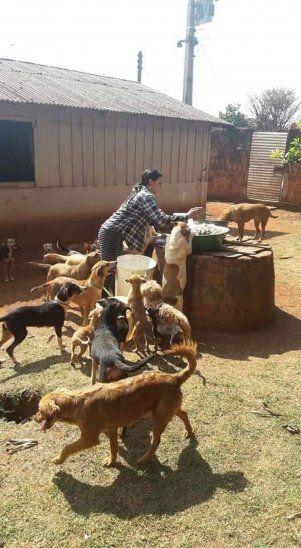 Así rescataba y cuidaba Angélica a los animales