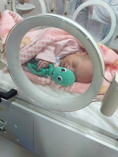 Tejieron coloridos pulpitos para mimar a bebés prematuros