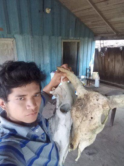 Vicente recorre los campos donde trabaja y junta las cabezas de ganado.