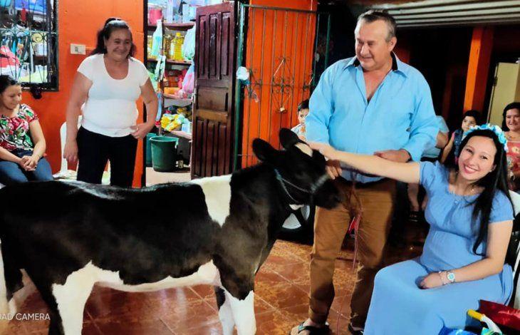 Don Hernán obsequió una vaquita a su nieto que está apunto de nacer.