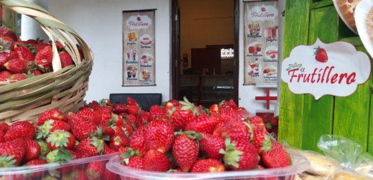 La feria de Frutilla en Areguá iniciará este viernes.
