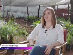 Monse Barros es la dueña del polémico invernadero La Mombi, pero detrás de su huerta escondía el negocio de plantación y venta de marihuana que tenía junto a otros 12 amigos. Luego del allanamiento quedó al descubierto un laboratorio de alta tecnología donde producían marihuana de alta calidad que vendían a la chetada asuncena a 100.000 guaraníes el gramo.